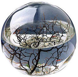 Ecosphere enclosed ecosystem