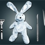 Save the bunny with interactive surgery