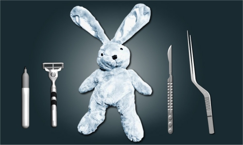 Save the bunny with surgery online