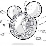 Mickey Mouse MP3 Player Info Update