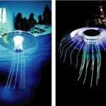 Summertime jellyfish