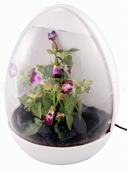 Brando's greenhouse has a USB-powered (And egg shaped) case that uses a growth light to stimulate plants.