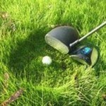 The Big Daddy Driver: lawn care & Golf in one