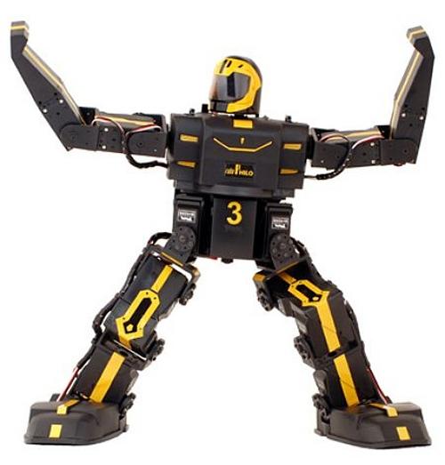 RoboPhilo RTW programmable robot