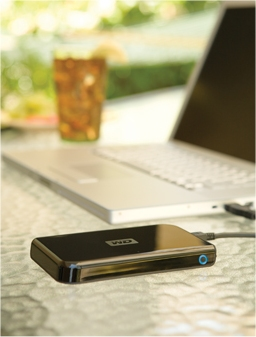 Passport 320GB external drive from Western Digital