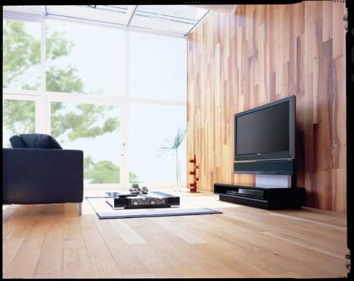 Sony Sound Wall RHT-S10