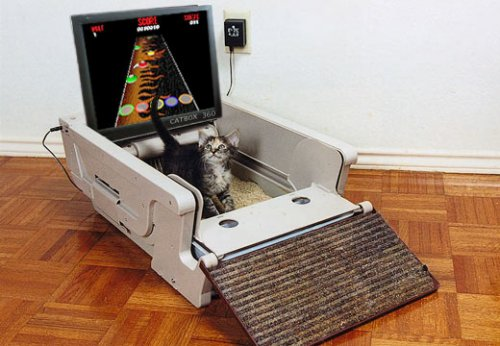 The CatBox 360: Games for cats