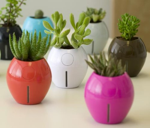 Grobal self-watering planters keep plants alive