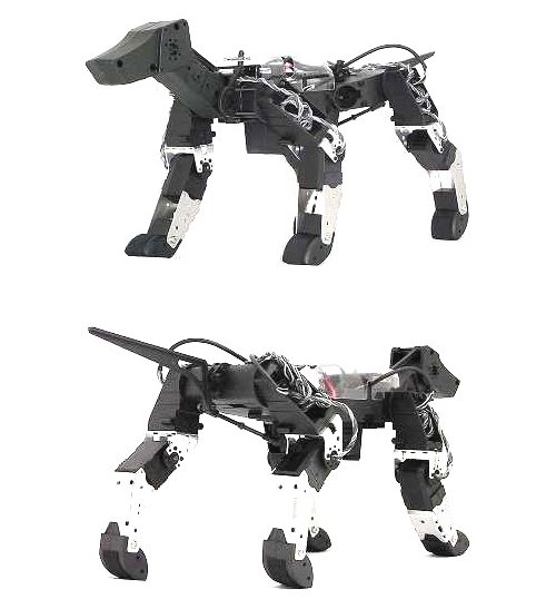 HPI G-Dog is next generation of robotic dogs