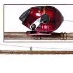 Walking stick & Fishing pole in one