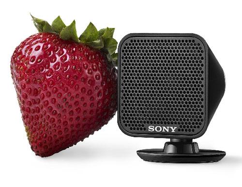 Sony HT-IS100
