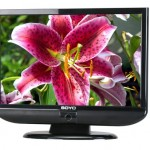 Soyo ships garden variety 22-inch LCD TV