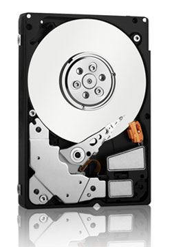 Western Digital VelociRaptor Enterprise Edition