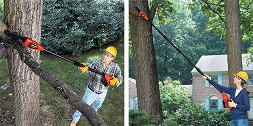 Cordless electric chain saw on a stick