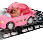 Critter Cruiser racetrack makes your Hamster dizzy