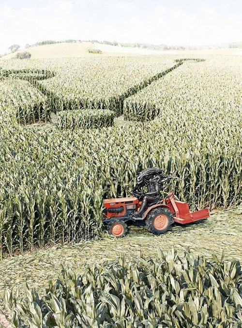 The secret behind crop circles exposed
