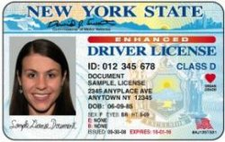 New York to offer RFID-embedded driver's licenses