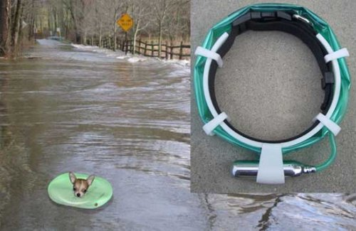 Floating Pet Collar keeps Fido safe