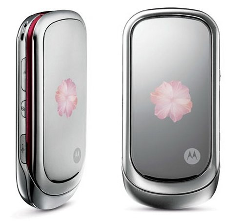 Motorola PEBL Rose Bloom for Valentine's Day