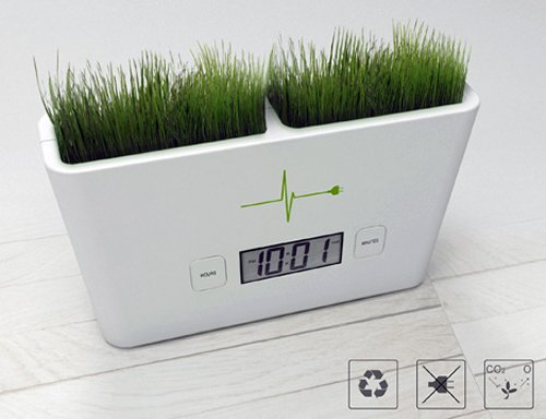 Timeless Garden lets you grow grass, tell time