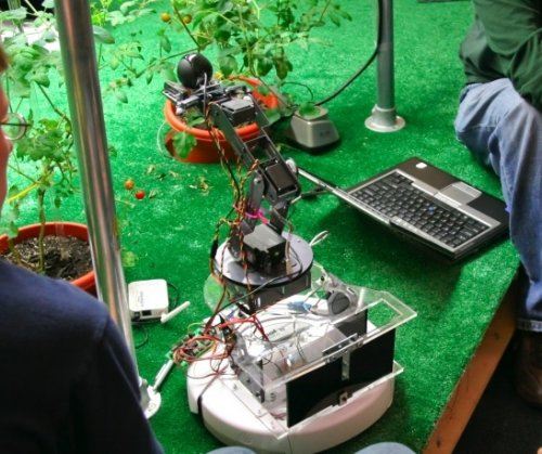 Robotic gardeners tend tomato plants