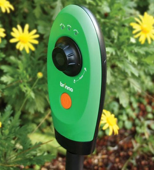 The Timelapse Garden video camera