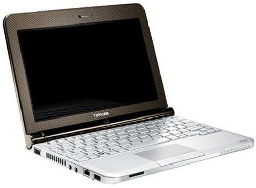 Toshiba Mini NB200 Netbook with 9-Cell battery