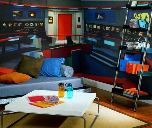 Star Trek wall mural