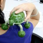 USB Tortoise Massager