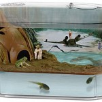 Your frog can go from tadpole to Jedi Master with the Dagobah frogtank