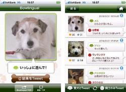 BowLingual for iPhone translates dog-speak, lets him tweet