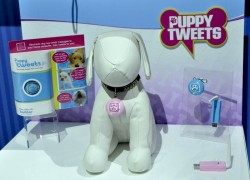 Puppy Tweets turns your dog into a Twitter hound