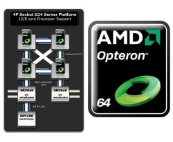 AMD launches Opteron 6000 12 Core Processors