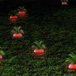 Ripe Radish garden light concept looks like a power up