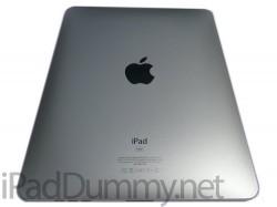 iPad Dummy is an iPad for dummies