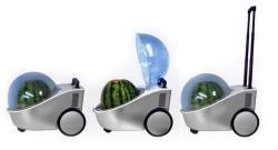 Marugoto Tamachan portable watermelon cooler
