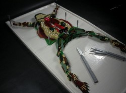 Lego Dissected Frog is the grossed Lego project ever