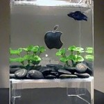 Mac fish tank made from an old Power Mac G4 Cube
