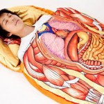 Anatomy model sleeping bag