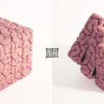 Rubik's Brain Cube