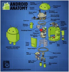 The Android Robot gets a teardown of his own