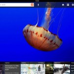 Microsoft releases Bing iPad App