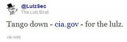 LulzSec takes down the CIA website